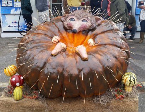 damariscotta-pumpkin-fest-38-640x495